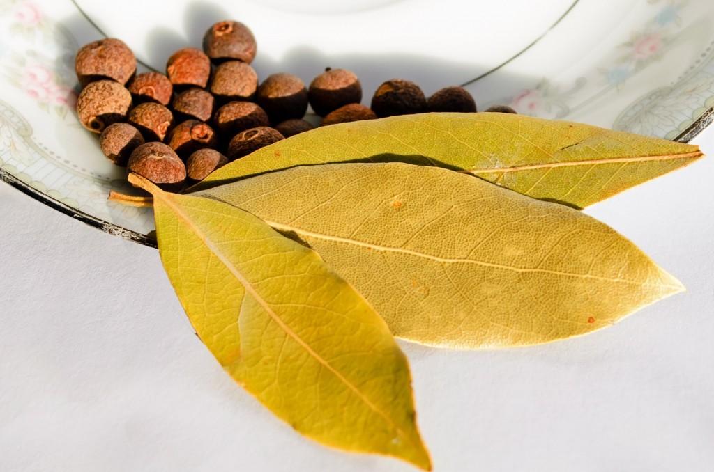 bay leaf medicinal uses