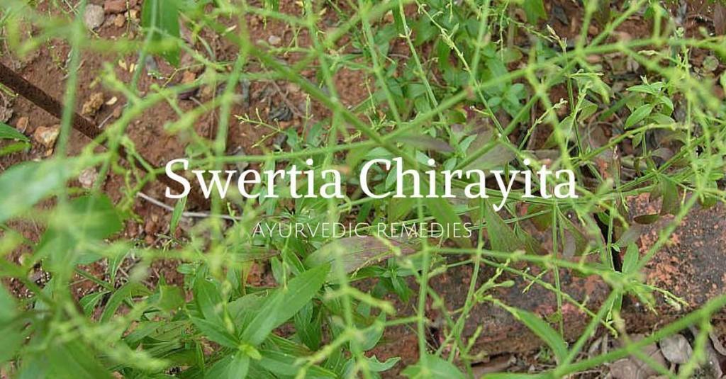 chirayata